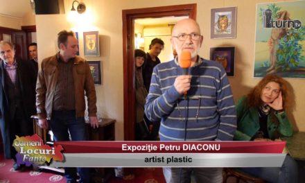 Expozitie Petrica Diaconu