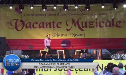 Vacante Muzicale SEARA MUZICII FLAMENCO partea 1