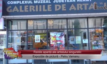 Expozitie de pictura Petru Vamanu