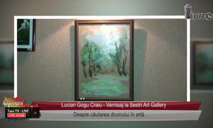Despre cautarea drumului in arta