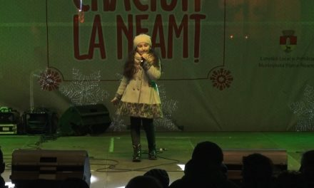 Târgul de Crăciun – Mara Elena Matasă