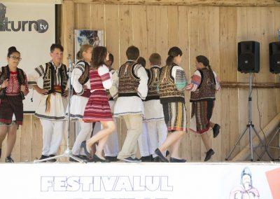 Festivalul haiducilor Grinties-96