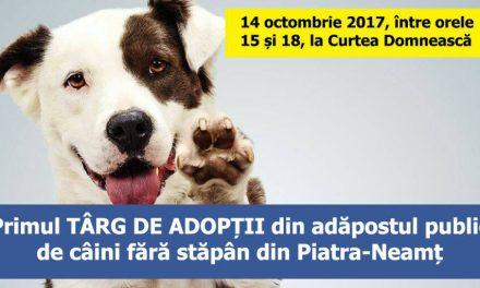 Primul târg de adopții din adăpostul public de câini fără stăpân din Piatra-Neamț.