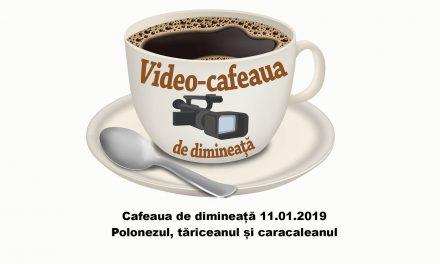 Cafeaua de dimineată – 11.01. 2019