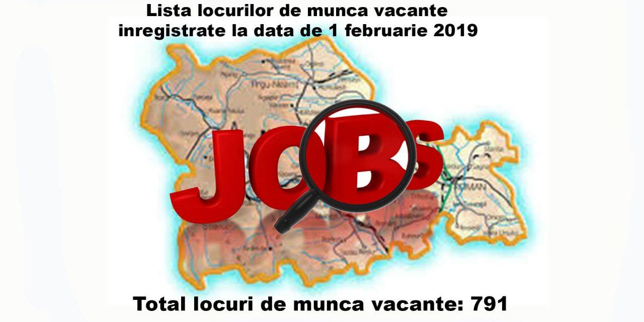 Lista locurilor de munca vacante