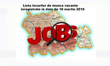 Lista locurilor de muncă vacante înregistrate la data de 18 martie 2019