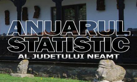 Ponderea şi locul judeţului Neamţ în economia naţională