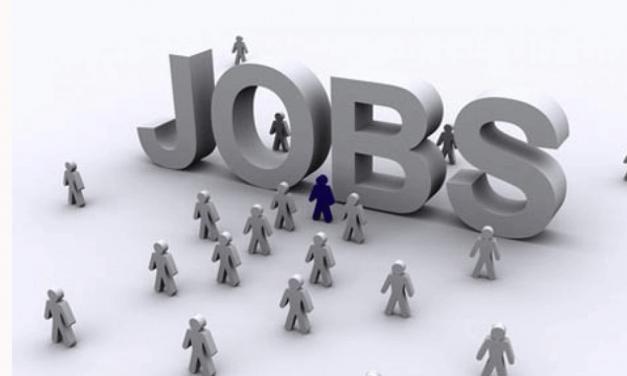 304 locuri de muncă vacante înregistrate la data de 2 iunie 2020