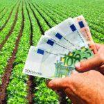 APIA demarează plata în avans pentru fermierii
